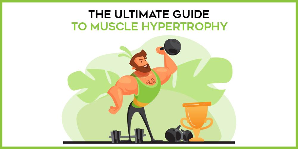 hypertrophy guide